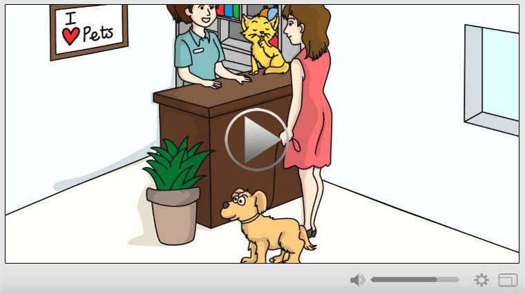 Pet Grooming Services Whiteboard Video Commercial