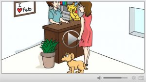 Done For You Pet Grooming Whiteboard Video